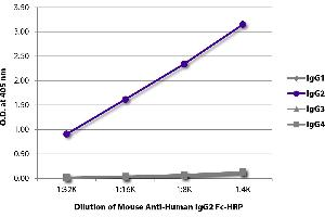Image no. 1 for Mouse anti-Human IgG2 (Fc Region), (Heavy Chain) antibody (ABIN135628)