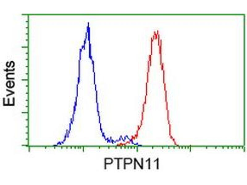 Flow Cytometry (FACS) image for anti-Protein tyrosine Phosphatase, Non-Receptor Type 11 (PTPN11) antibody (ABIN2453869)