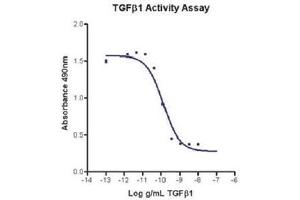 Image no. 1 for Transforming Growth Factor, beta 1 (TGFB1) (Active) protein (ABIN1525759)