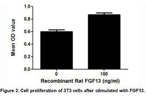 Image no. 1 for Fibroblast Growth Factor 13 (FGF13) (AA 1-192) (Active) protein (His tag) (ABIN6239865)