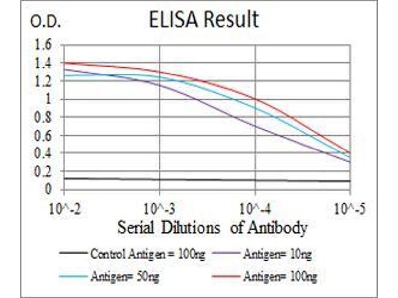 ELISA image for anti-Prokineticin Receptor 2 (PROKR2) (AA 121-136) antibody (ABIN5542372)