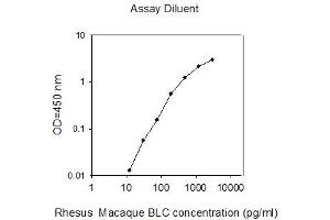 Image no. 1 for Chemokine (C-X-C Motif) Ligand 13 (CXCL13) ELISA Kit (ABIN2747988)