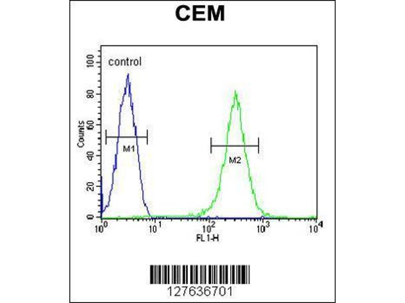 Flow Cytometry (FACS) image for anti-Inositol Polyphosphate-5-Phosphatase, 75kDa (INPP5B) (AA 950-979), (C-Term) antibody (ABIN654447)