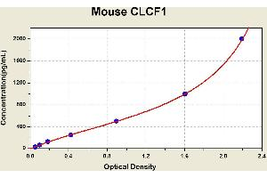 Image no. 1 for Cardiotrophin-Like Cytokine Factor 1 (CLCF1) ELISA Kit (ABIN1113971)