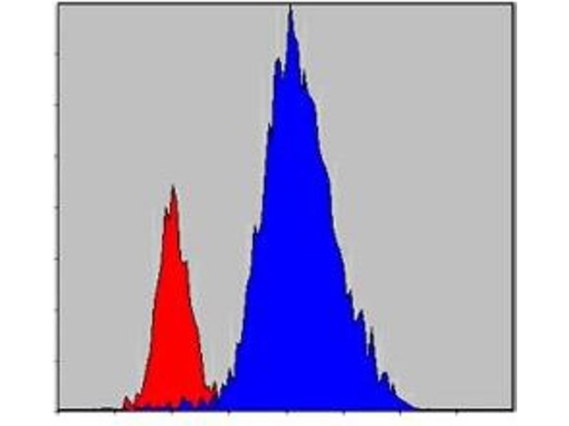 Flow Cytometry (FACS) image for anti-Tyrosine-Protein Kinase JAK3 (JAK3) antibody (ABIN1109428)