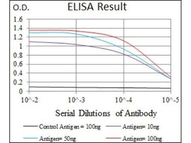 ELISA image for anti-MAP kinase p38 (p38) antibody (ABIN4342694)