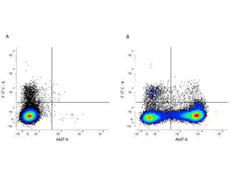 Flow Cytometry (FACS) image for anti-Integrin alpha M (ITGAM) antibody (ABIN5665684)