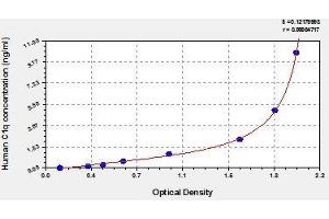 Image no. 1 for Complement Component 1, Q Subcomponent, B Chain (C1QB) ELISA Kit (ABIN811757)