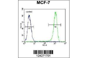 Flow Cytometry (FACS) image for anti-B-Cell CLL/lymphoma 10 (BCL10) (AA 24-51), (N-Term) antibody (ABIN654655)