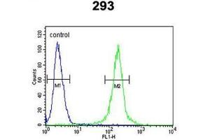 Flow Cytometry (FACS) image for anti-Anti-Mullerian Hormone (AMH) (AA 430-460), (Middle Region) antibody (ABIN950438)