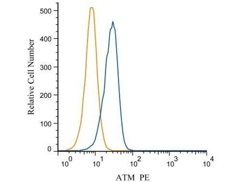 Flow Cytometry (FACS) image for anti-ATM antibody (Ataxia Telangiectasia Mutated) (C-Term) (ABIN151030)