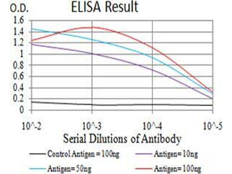 ELISA image for anti-Cyclin D1 (CCND1) (AA 167-295) antibody (ABIN4880607)