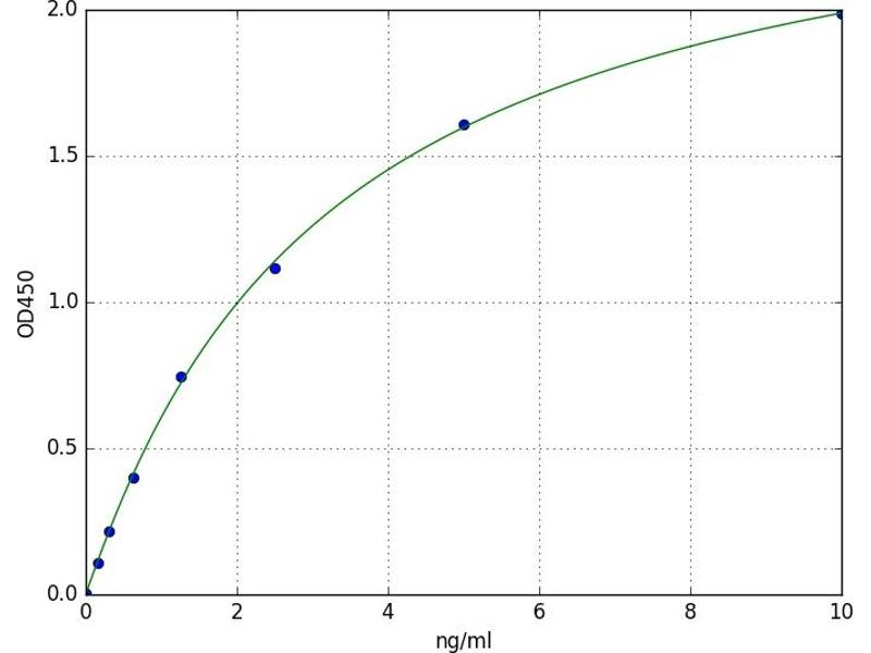 Eukaryotic Elongation Factor-2 Kinase (EEF2K) ELISA Kit