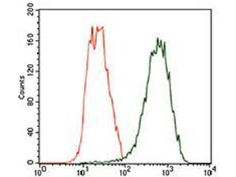 Flow Cytometry (FACS) image for anti-Tubulin, beta 2A (TUBB2A) (AA 25-187) antibody (ABIN1724832)