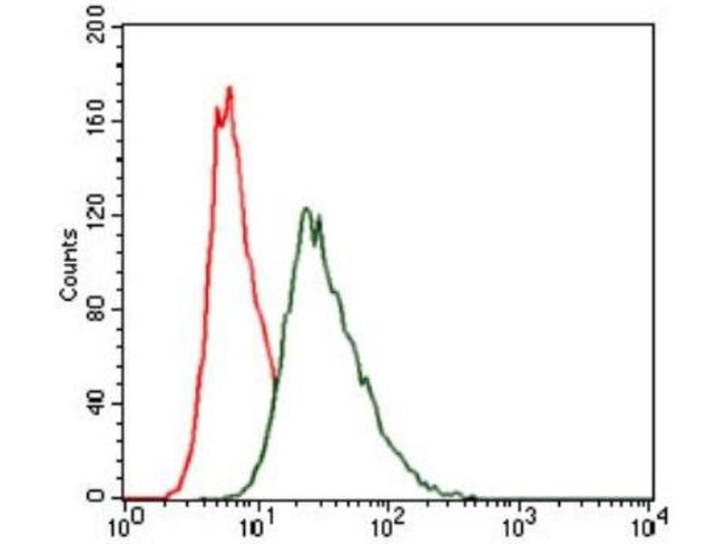 Flow Cytometry (FACS) image for anti-Heat Shock Transcription Factor 4 (HSF4) antibody (ABIN4319945)