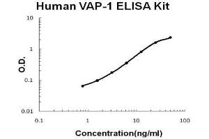 Image no. 1 for Amine Oxidase, Copper Containing 3 (Vascular Adhesion Protein 1) (AOC3) ELISA Kit (ABIN5692226)
