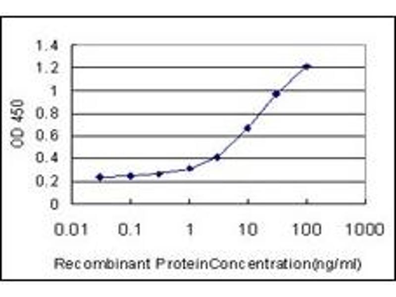 ELISA image for anti-SGK1 antibody (serum/glucocorticoid Regulated Kinase 1) (ABIN781841)