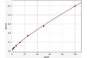 Image no. 1 for C-Reactive Protein (CRP) ELISA Kit (ABIN6965263)