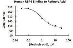ELISA image for Retinol Binding Protein 4, Plasma (RBP4) (AA 19-201), (C-Term) (Active) 蛋白 (ABIN2666743)