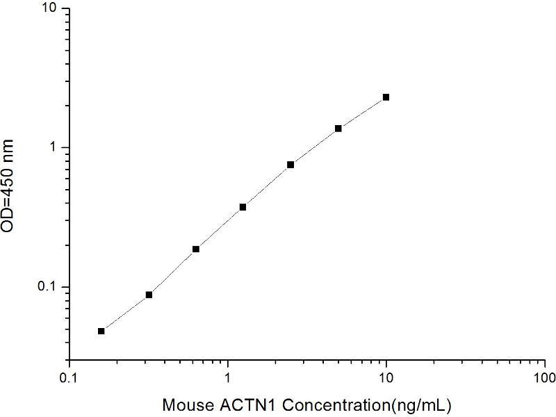 Actinin, alpha 1 (ACTN1) ELISA Kit