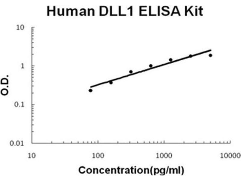 delta-Like 1 (DLL1) ELISA Kit