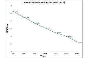 Image no. 1 for anti-Cytomegalovirus (CMV) antibody (ABIN1713333)