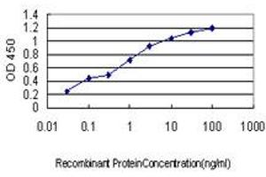 Image no. 1 for anti-Leucine Zipper-EF-Hand Containing Transmembrane Protein 1 (LETM1) (AA 601-708) antibody (ABIN561659)