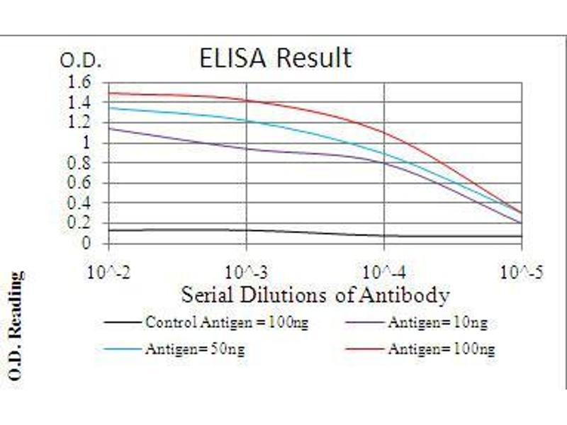 ELISA image for anti-Phospholipase C gamma 2 (PLCG2) (AA 826-985) antibody (ABIN4880951)