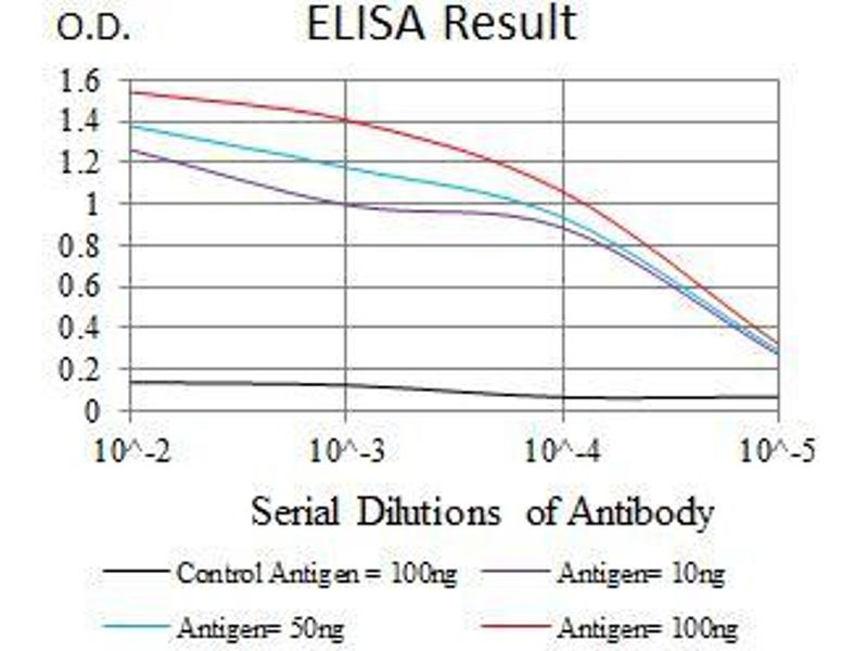 ELISA image for anti-Tumor Protein P53 Binding Protein 1 (TP53BP1) (AA 574-773) antibody (ABIN1724821)