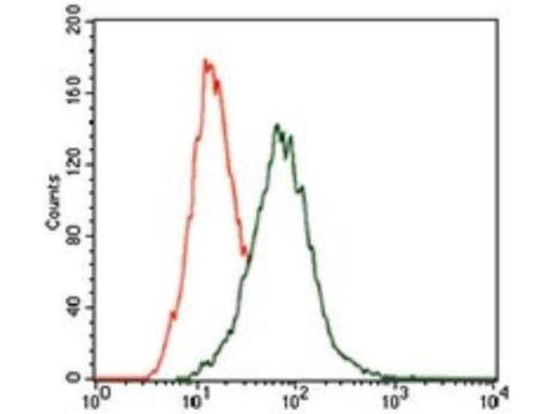 Flow Cytometry (FACS) image for anti-p38 Antikörper (MAP kinase p38) (ABIN4342694)