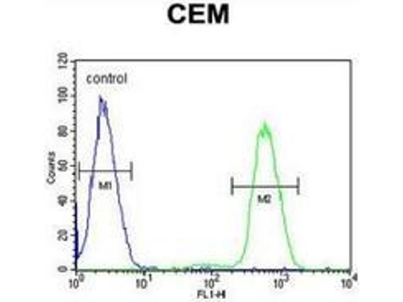 Flow Cytometry (FACS) image for anti-Nuclear Factor of kappa Light Polypeptide Gene Enhancer in B-Cells Inhibitor-Like 1 (NFKBIL1) (AA 256-289), (Middle Region) antibody (ABIN953695)