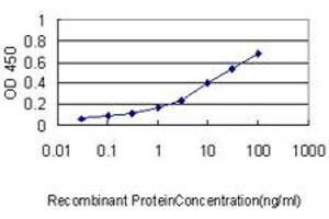 Image no. 3 for anti-Heterogeneous Nuclear Ribonucleoprotein A2/B1 (HNRNPA2B1) (AA 1-249) antibody (ABIN561313)