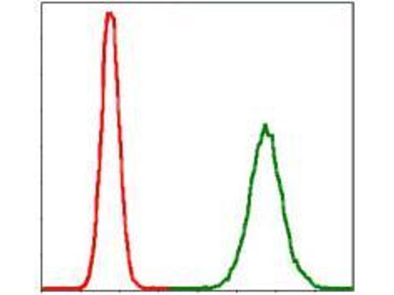 Flow Cytometry (FACS) image for anti-PPP2R4 antibody (Protein Phosphatase 2A Activator, Regulatory Subunit 4) (ABIN969557)