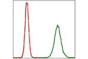 Flow Cytometry (FACS) image for anti-Protein Phosphatase 2A Activator, Regulatory Subunit 4 (PPP2R4) antibody (ABIN969557)