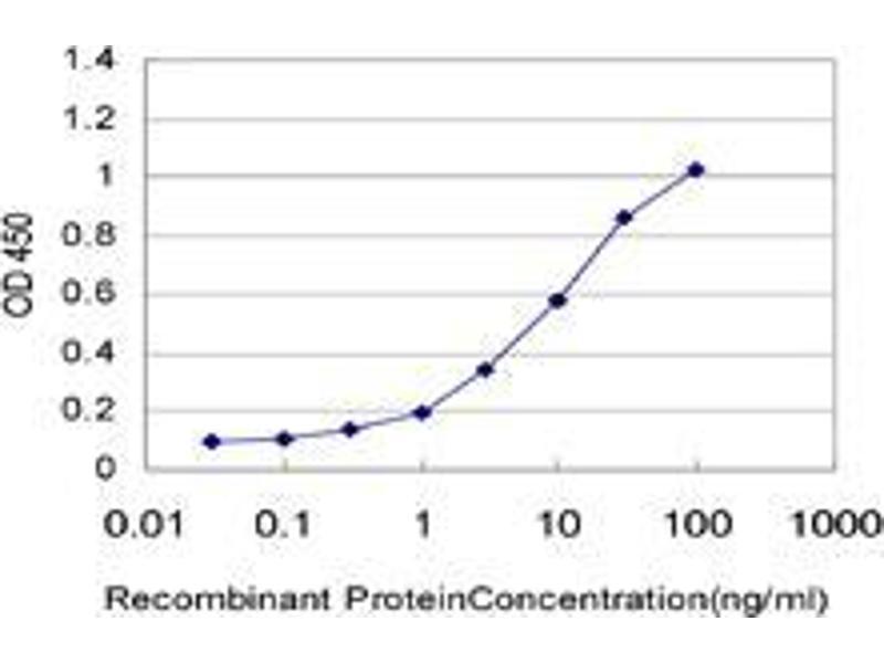 Immunohistochemistry (IHC) image for anti-Ubiquitin-Conjugating Enzyme E2D 1 (UBE2D1) (AA 1-95) antibody (ABIN393588)