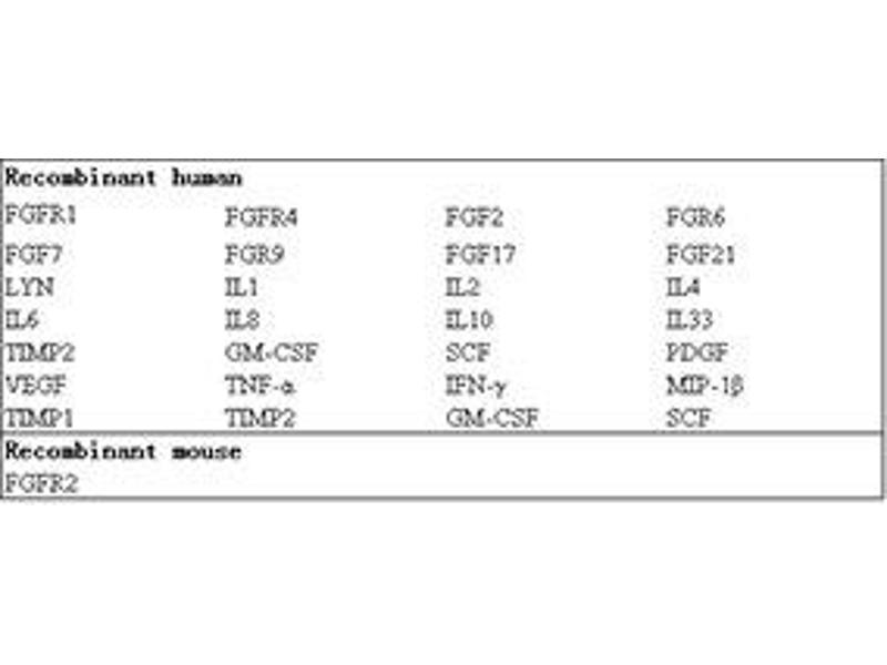 Fibroblast Growth Factor Receptor 2 (FGFR2) ELISA Kit (2)