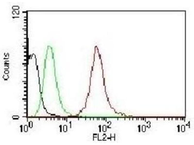 Flow Cytometry (FACS) image for anti-Cytokeratin 1 (KRT1) antibody (ABIN4302150)