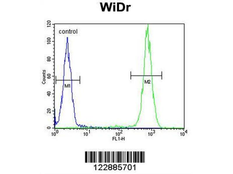 Flow Cytometry (FACS) image for anti-IL-4 antibody (Interleukin 4) (AA 122-150) (ABIN651434)
