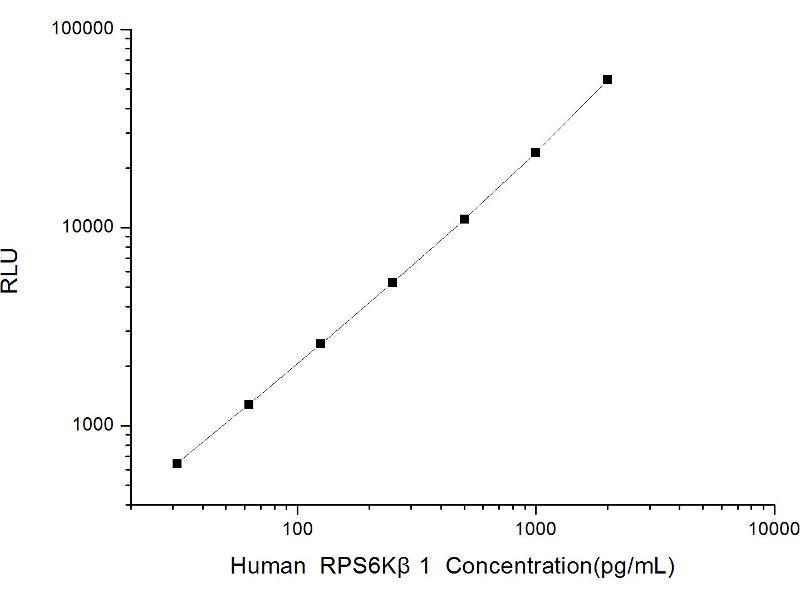 Ribosomal Protein S6 Kinase, 70kDa, Polypeptide 1 (RPS6KB1) ELISA Kit