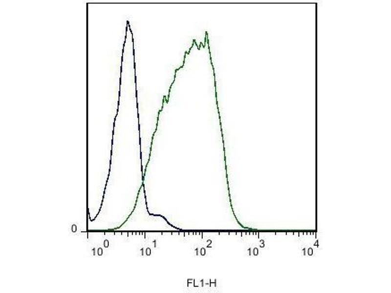 Flow Cytometry (FACS) image for anti-EPH Receptor B6 Antikörper (EPHB6) (ABIN742230)