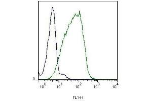 Flow Cytometry (FACS) image for anti-EPH Receptor B6 (EPHB6) antibody (ABIN742230)