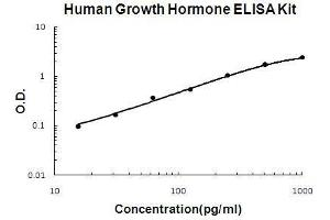 ELISA image for Growth Hormone 1 ELISA Kit (GH1) (ABIN411378)
