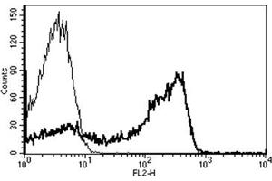 Flow Cytometry (FACS) image for anti-CD2 Antikörper (CD2 Molecule)  (Biotin) (ABIN1106020)