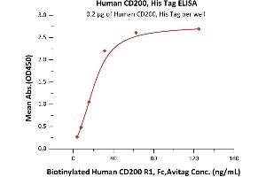 Image no. 1 for CD200 (CD200) (AA 31-232) protein (His tag) (ABIN2180723)