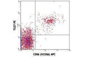 Flow Cytometry (FACS) image for anti-Interleukin 2 Receptor, beta (IL2RB) antibody (PE) (ABIN2662984)