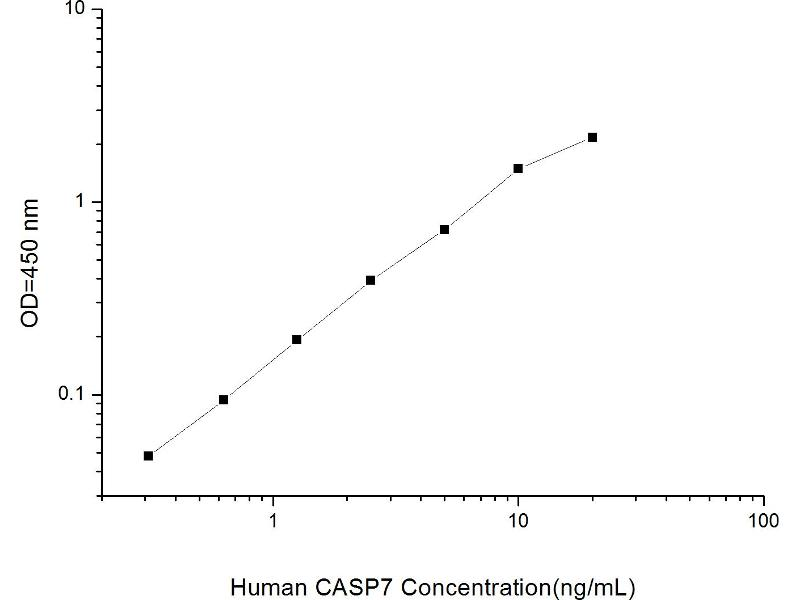 Caspase 7, Apoptosis-Related Cysteine Peptidase (CASP7) ELISA Kit (2)