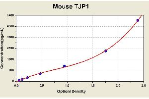 Image no. 1 for Tight Junction Protein 1 (Zona Occludens 1) (TJP1) ELISA Kit (ABIN1117499)