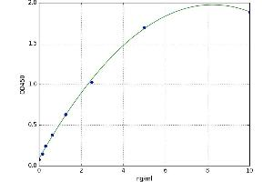 Image no. 1 for Early Growth Response 1 (EGR1) ELISA Kit (ABIN5520470)