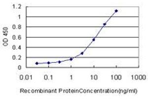 Image no. 4 for anti-CDKN2A Interacting Protein (CDKN2AIP) (AA 1-579) antibody (ABIN565885)