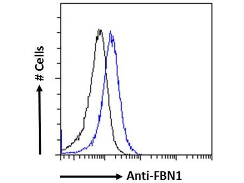 Flow Cytometry (FACS) image for anti-Fibrillin 1 (FBN1) (Internal Region) antibody (ABIN570798)